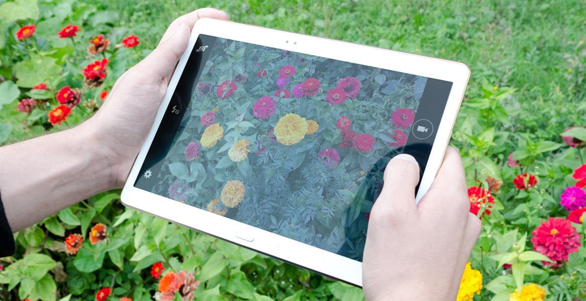 Samsung Galaxy Tab S 10.5 и море цветов